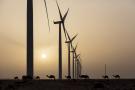 Parc éolien de Tarfaya, plus grand parc éolien d'Afrique
