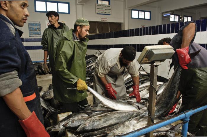 Une économie tournée vers la pêche