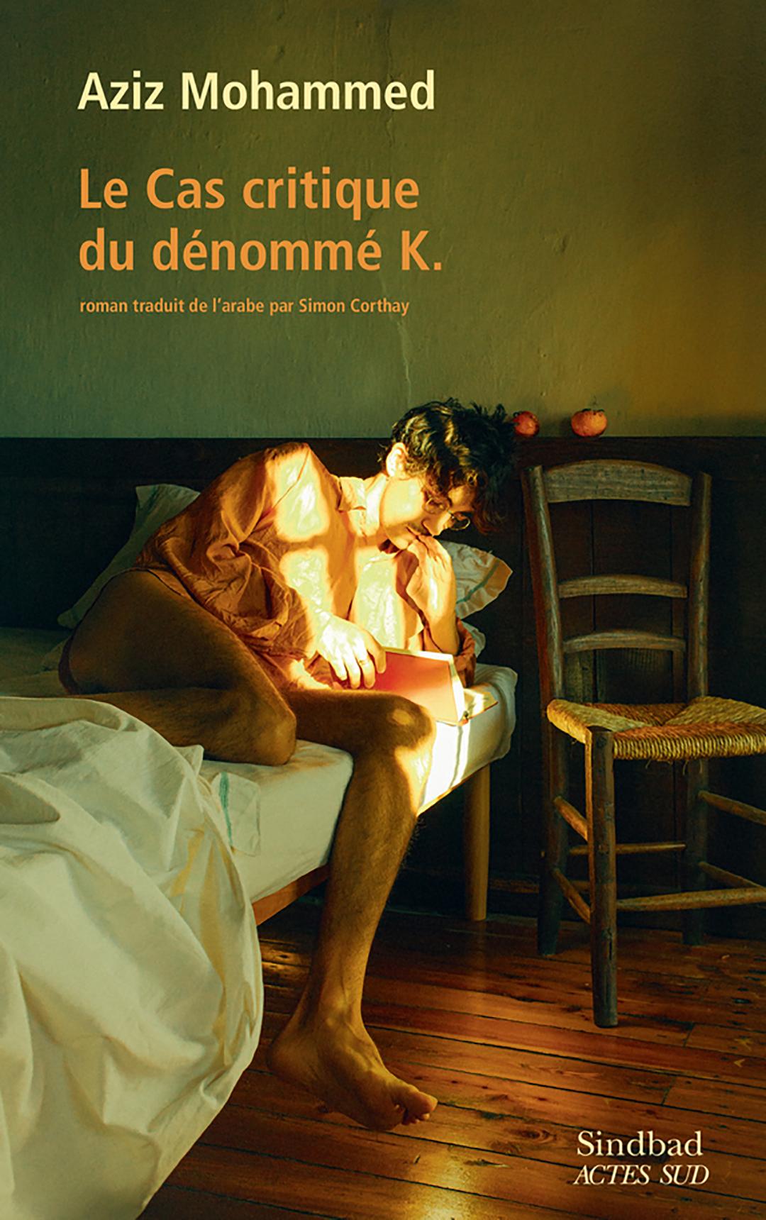 «Le cas critique du dénommé K»,Sindbad/Actes Sud, traduit par Simon Corthay, 317 p., 22,50€