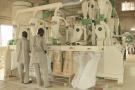 Transformation des céréales aux Grands moulins du Faso