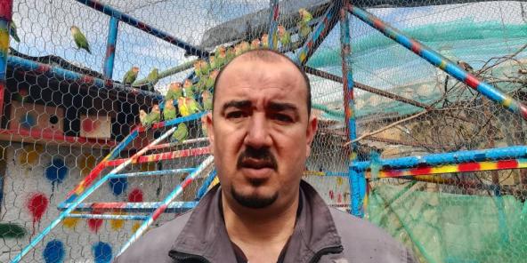 rencontre algerie avec photo homme