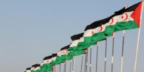 Des drapeaux de la République arabe sahraouie démocratique (RASD), à Tifariti.