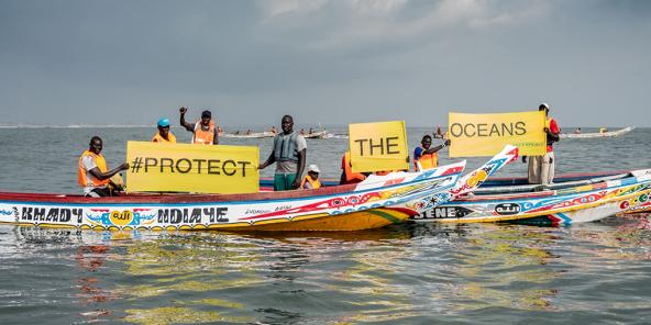 Une flottille de pirogues sénégalaises accueille l'Arctic Sunrise de Greenpeace qui inventorie les dégâts de la surpêche en Afrique