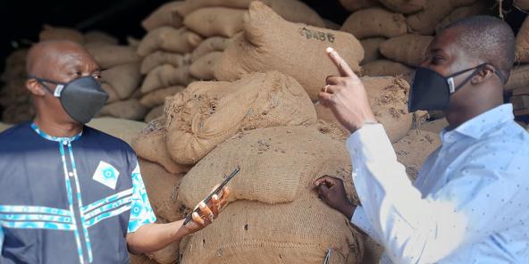 Le géant américain peut retracer la provenance des fèves grâce à sa plateforme Cocoawise.