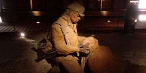 Les héritiers d'Ousmane Sow ont prêté pour dix années renouvelables l'ensemble de 35 sculptures que l'artiste réalisa entre 1996 et 1998.