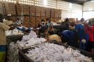 Centre de tri et de recyclage d'Africa Global Recycling, à Lomé.